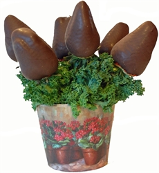 Picture of Chocolate Covered Strawberry Bouquet - Minis
